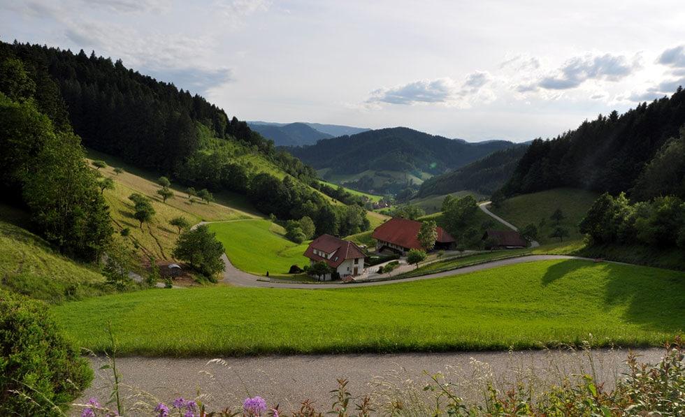 Wir in der Ortenau, der Schwarzwald